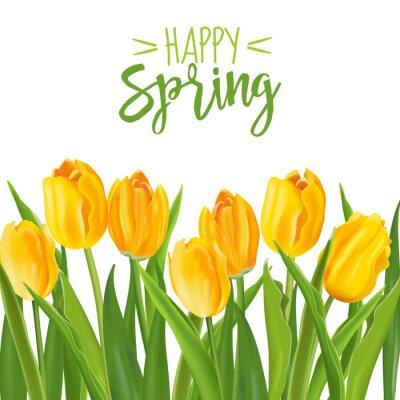 Naklejka Spring Flower Background - z tulipanami - w wektorze