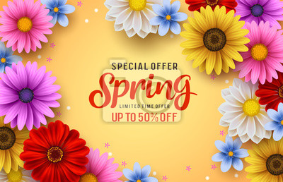 Naklejka Spring special offer vector banner background with spring season sale text and colorful chrysanthemum and daisy flowers elements in yellow background. Vector illustration.