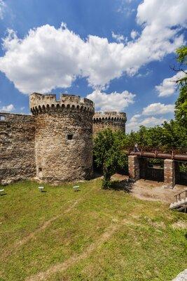 Stara twierdza ściana i przyroda