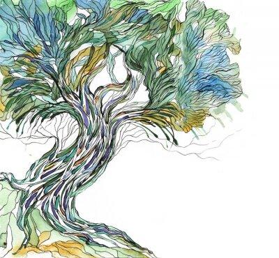 Naklejka stare drzewo