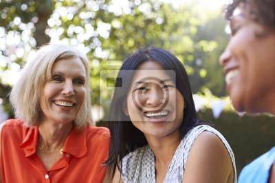 Naklejka Starsza kobieta Przyjaciele towarzyskich w Backyard Razem