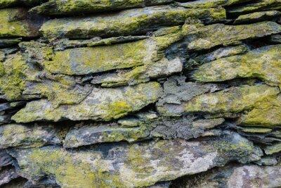 Naklejka Steinmauer mit Grünspan