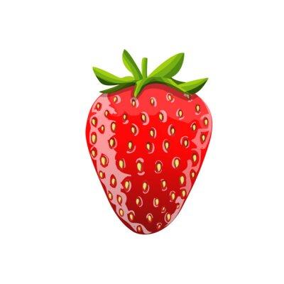 Naklejka Strawberry ilustracji. Izolowane obrazu. Wektor