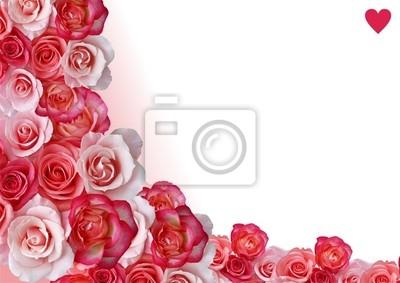 Naklejka Streszczenie granicy, kwiaty, biały i biały róża