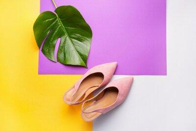 Naklejka Stylish female shoes and tropical leaf on color background