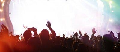 Naklejka Summer festival concert crowd lights