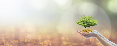 Naklejka Sustainable business investment in environment, social, governance (ESG) and CSR concept in clean industry with volunteer hands holding green tree on capital fund wealth on world city bokeh background
