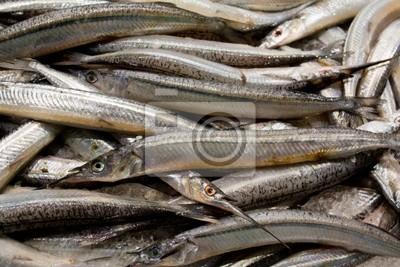Naklejka Świeże Garfish na rynku ryb