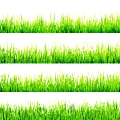 Naklejka Świeże wiosny zielona trawa samodzielnie na białym. EPS 10