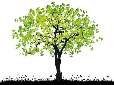 Naklejka Sylwetka starego drzewa, trawa, lato
