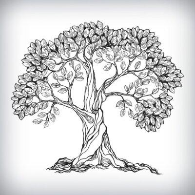 Naklejka Symbol drzewa wyciągnąć rękę