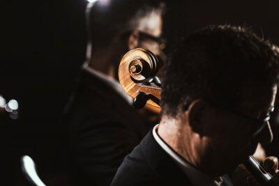 Naklejka Symphonic orchestra playing on stage
