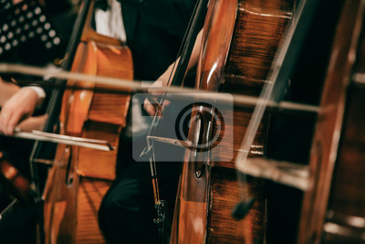 Naklejka Symphony orchestra on stage, hands playing cello