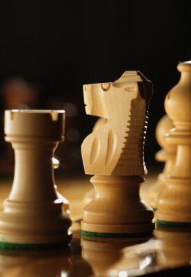 szachy, Low głębi ostrości, koncentrują się na konia