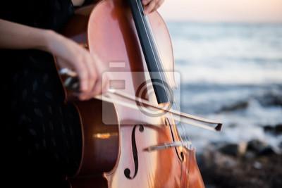 Naklejka Szczegół dziewczyna z jej wiolonczelą na outside
