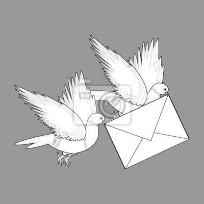 Szkic dwóch latających gołębi z listem