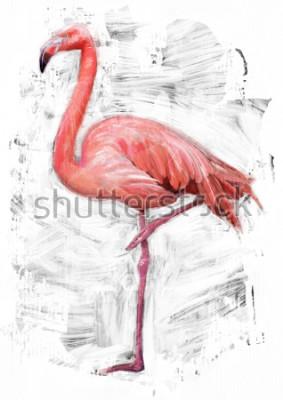 Naklejka szkic ptak flamingo / malowanie farbą olejną