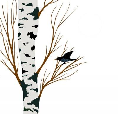 Naklejka szpak na rysunku brzozy