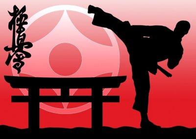 Sztuki Walki Kolorowe Simbol Plakat Tekstury Tła Fist Naklejki Redro