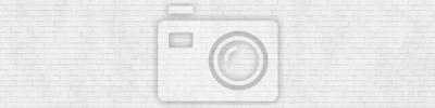 Naklejka Tekstury tła białego ceglanego muru