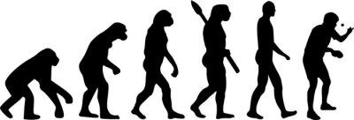 Tenis stołowy Ewolucja