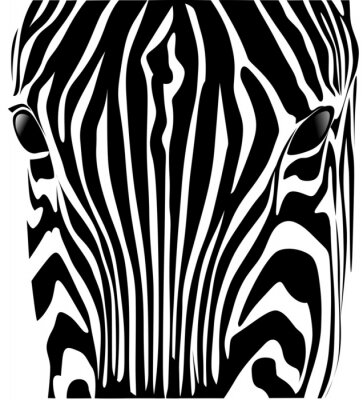 Naklejka testa zebra