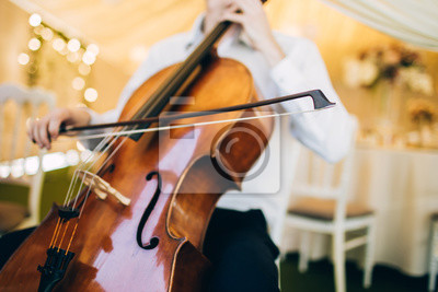 Naklejka The music quartet plays at the wedding. String Quartet. The actor performs at a party. musical instrument.