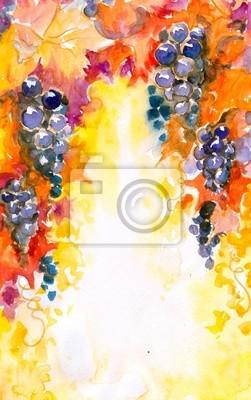 Naklejka tło z akwarel winogron malowane.