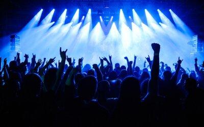 Naklejka Tłum podnosi rękę w powietrzu i cieszy się koncert na festiwalu