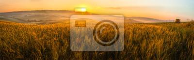 Naklejka Toskania pole pszenicy panorama na wschód słońca