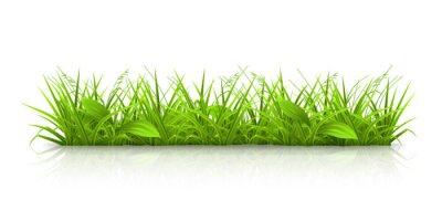 Naklejka trawa