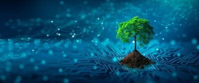 Naklejka Tree with soil growing on  the converging point of computer circuit board. Blue light and wireframe network background. Green Computing, Green Technology, Green IT, csr, and IT ethics Concept.