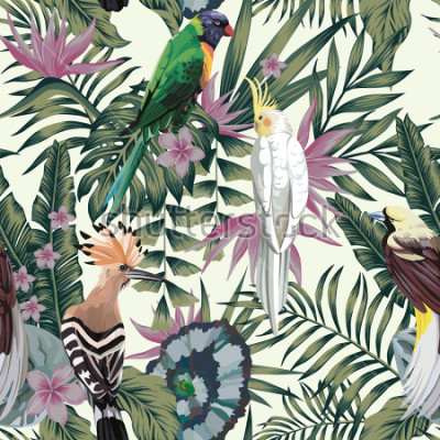 Naklejka Tropical birds parrot hoopoe, exotic jungle plants leaves flowers abstract pastel color seamless white background