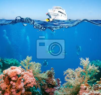 Naklejka Tropical Fish and Coral Reef