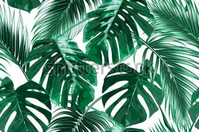 Naklejka Tropikalne liście palmowe, dżungli pozostawia bez wzorów wektor kwiatowy wzór tła