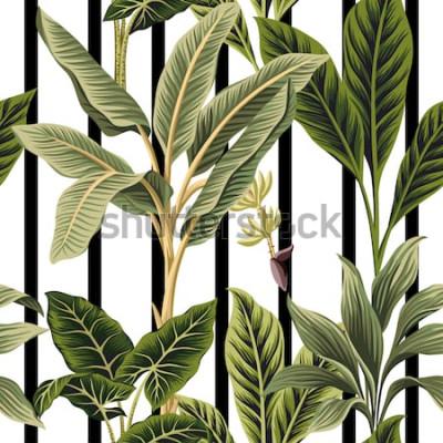 Naklejka Tropikalne palmy rocznika, bananowe drzewo kwiatowy wzór czarno-białe paski tle. Tapeta egzotycznych dżungli botanicznych.
