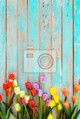 Naklejka Tulip blossom flowers on vintage wooden background, border  frame design. vintage color tone - concept flower of spring or summer background