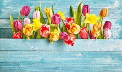 Naklejka Tulip granicy z miejsca kopiowania