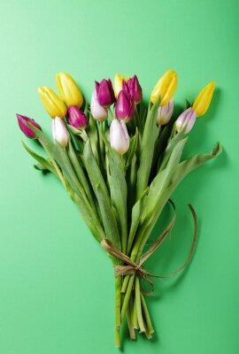 Naklejka tulipany kwiaty na zielonym tle