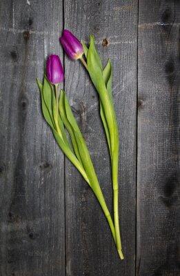Naklejka Tulipany na drewnianym TLE
