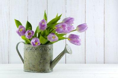 Naklejka Tulipany w Gießkanne