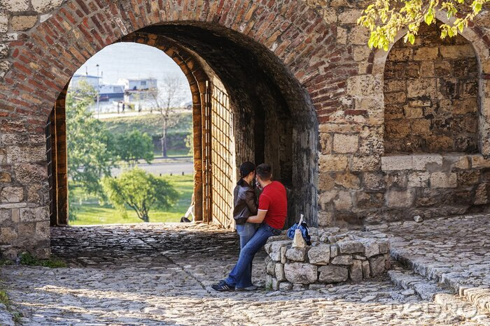 Naklejka Twierdza Belgrad i parku