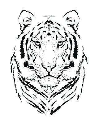 Naklejka Tygrys sylwetka