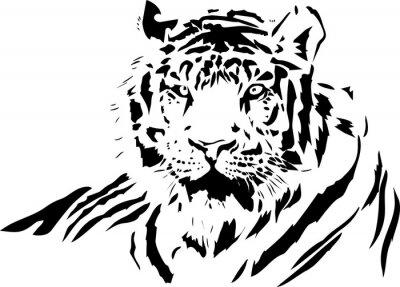 Naklejka Tygrys twarzy