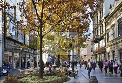Naklejka Ulica Księcia Michała w Belgradzie. Serbia