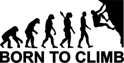 Urodzony Climb Evolution