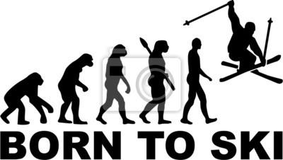 Urodzony Stunt Evolution Ski