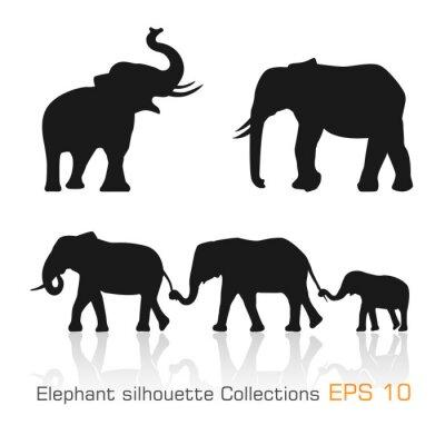 Naklejka Ustaw słoni sylwetka w różnych pozach
