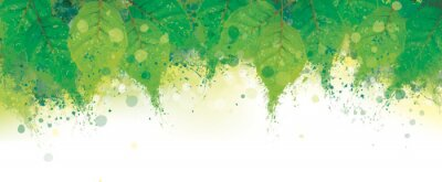 Naklejka Vector abstract green leaves border. Grungy nature background.