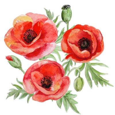 Naklejka Vector bouquet of red watercolor poppy flowers.